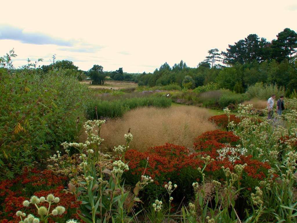 oudolf com - piet oudolf - gardens - public gardens - wisley