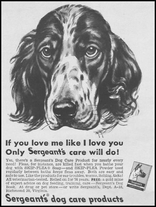 Sergeant's Dog Medicine