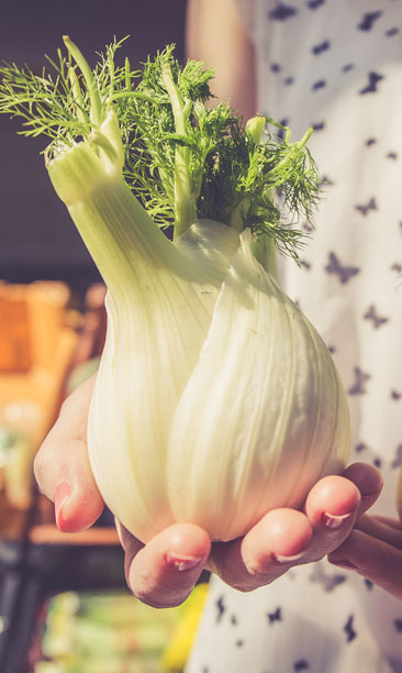 Herb Of The Week: Cooking With Fennel. Revered as one of nine Anglo-Saxon sacred herbs, fennel is widely used for medical and culinary purposes. It happens to be one of the most sought-after ingredients in many popular cuisines all over the Mediterranean regions. So go ahead and cook with fennel: we give you eight amazing recipes.