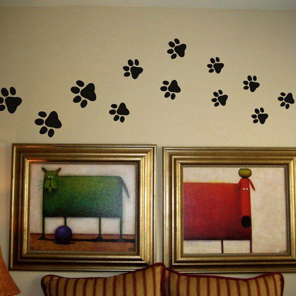 Dog Room Dol Great Dane Forum Cheetah Print Walls Room