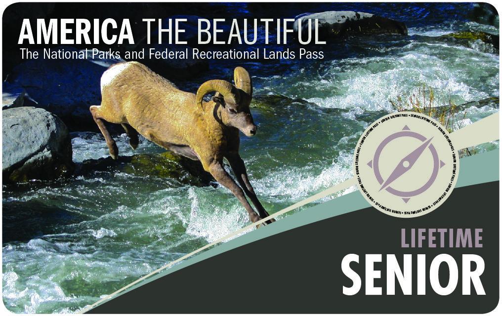 America The Beautiful National Parks Federal Recreational Lands Lifetime Senior Pass Usgs Store Us Park National Park Pass National Parks