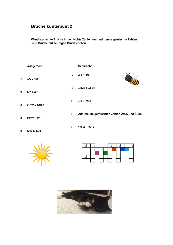 Bruche Kunterbunt Unterrichtsmaterial Im Fach Mathematik In 2020 Bruche Bruchrechnen Mathematik
