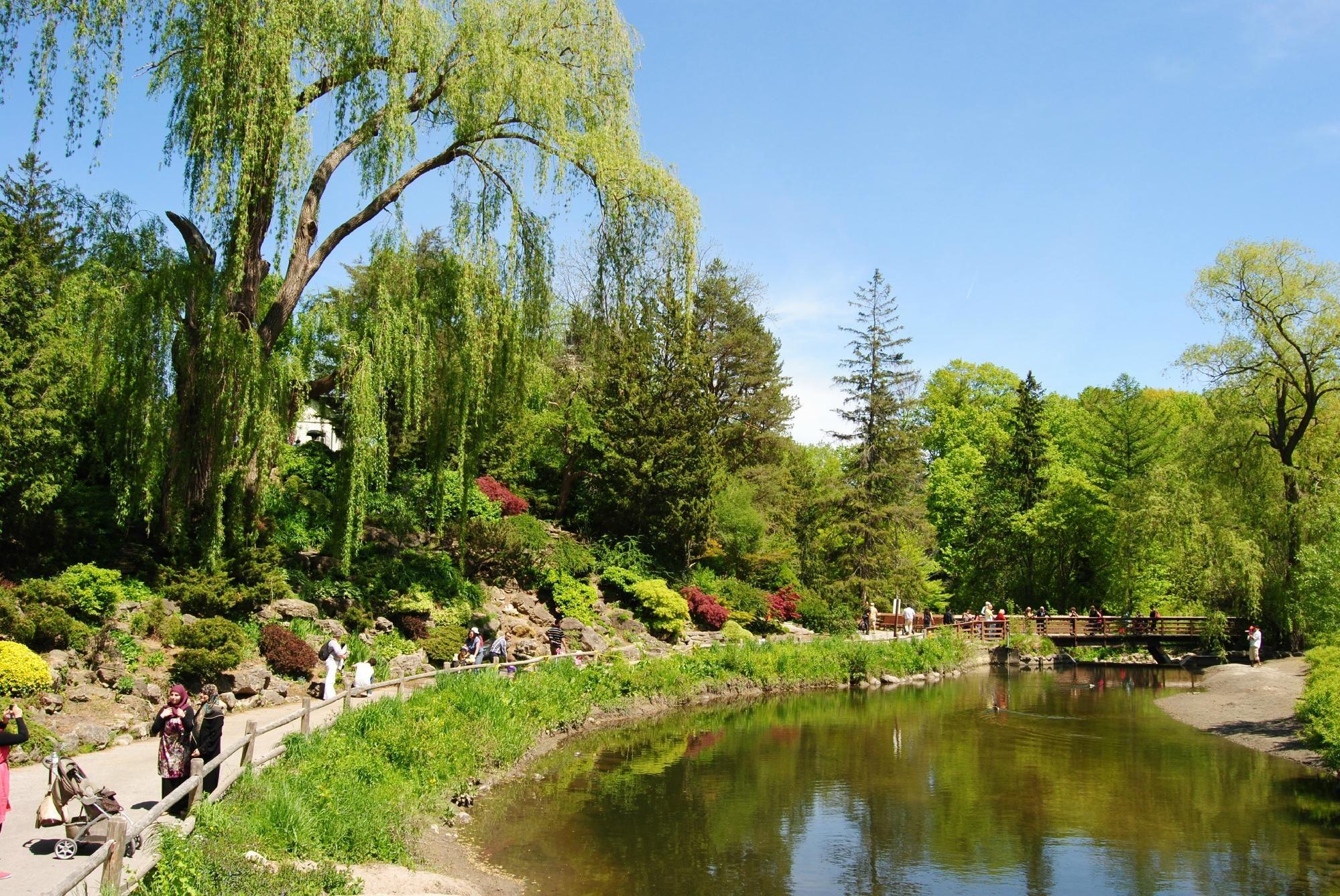 Toronto Botanical Garden - Ontario