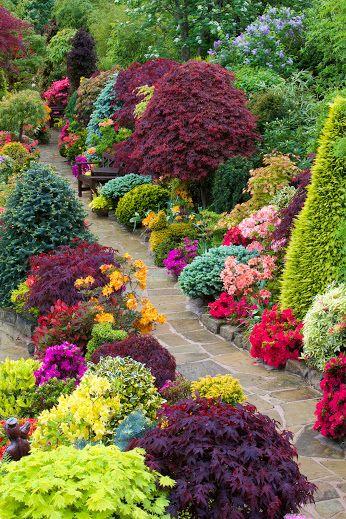 Pin de d en garden Pinterest Paisajismo, Jardines y Mejores amigos
