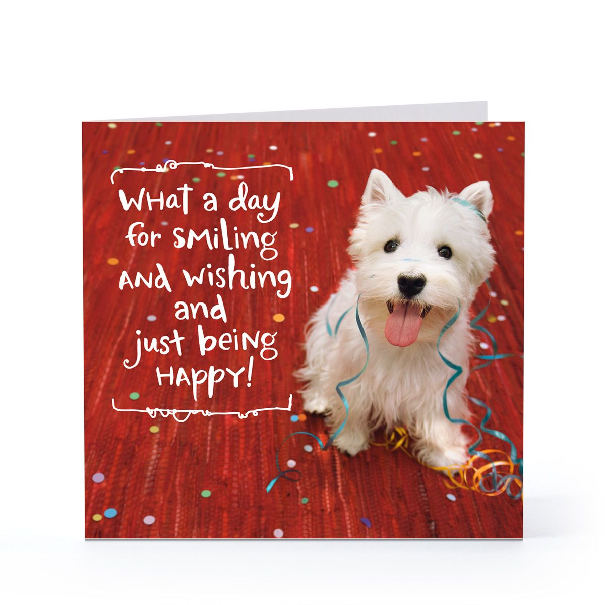 Dog Birthday Card Sayings | My Birthday | Pinterest | Surprise ...