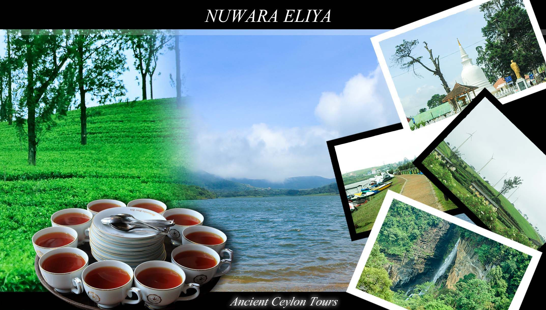 Nuwara Eliya Sri Lanka Nuwara Eliya Picturesque Central Province
