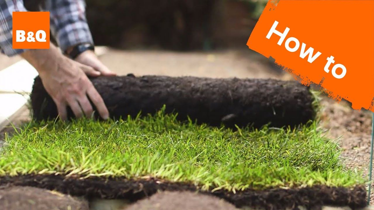 How To Lay A New Lawn From Turf Youtube How To Lay Turf Lawn Garden Turf