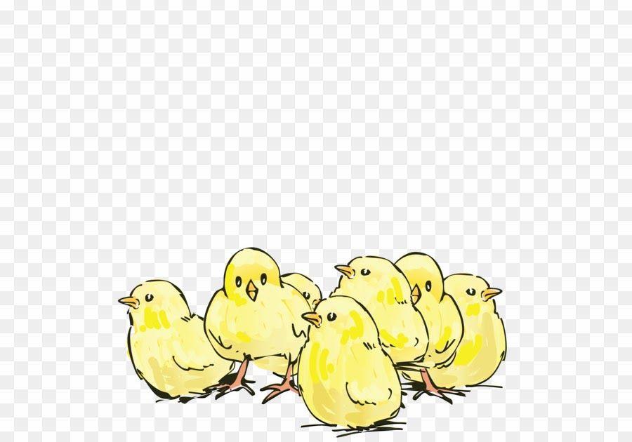 30 Gambar Kartun Ayam Hutan Gambar Ayam Selamat Datang Di Portal Hidupsimpel Yak Pada Kesempatan Kali Ini Kita Akan Membahas Tent Gambar Kartun Kartun Gambar