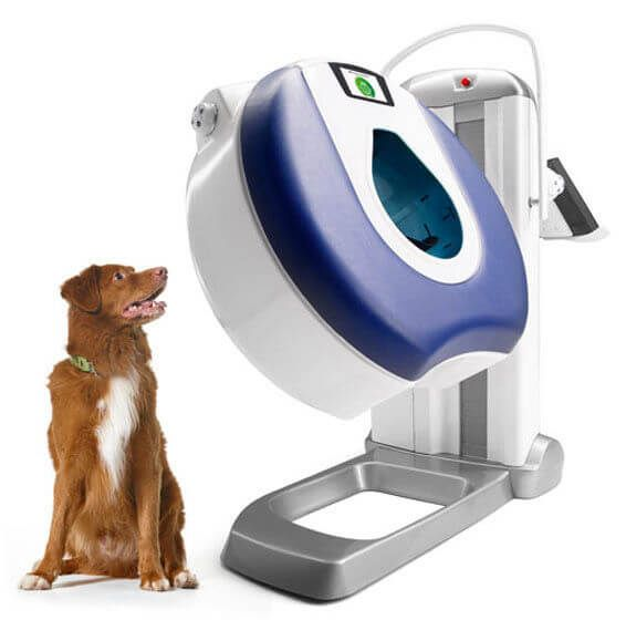 Pin on Small Animal Radiology Equipment