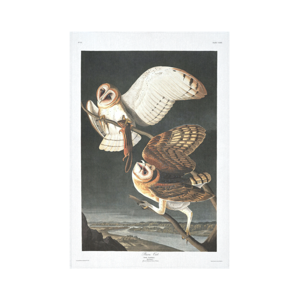 Barn owl audubon fine nature art cotton linen wall tapestry