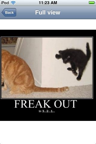 Freak out in..3..2..1