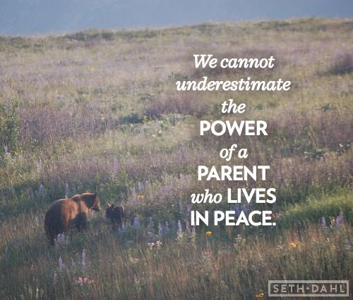 We cannot underestimate the power of a PARENT who lives in PEACE. -Seth Dahl, Bethel Church Children's Pastor, Redding, CA