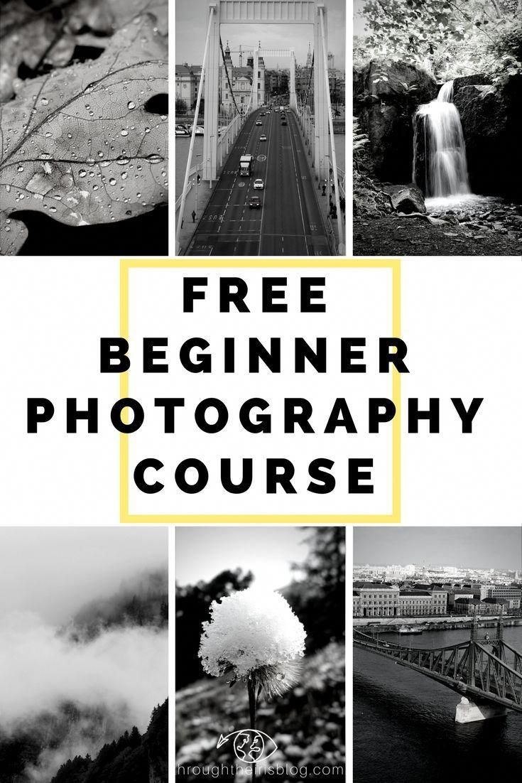 Free beginner photography course 5 week email course to