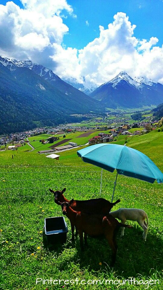 Sunny day in #Fulpmes in the Stubai Valley south from Innsbruck  100