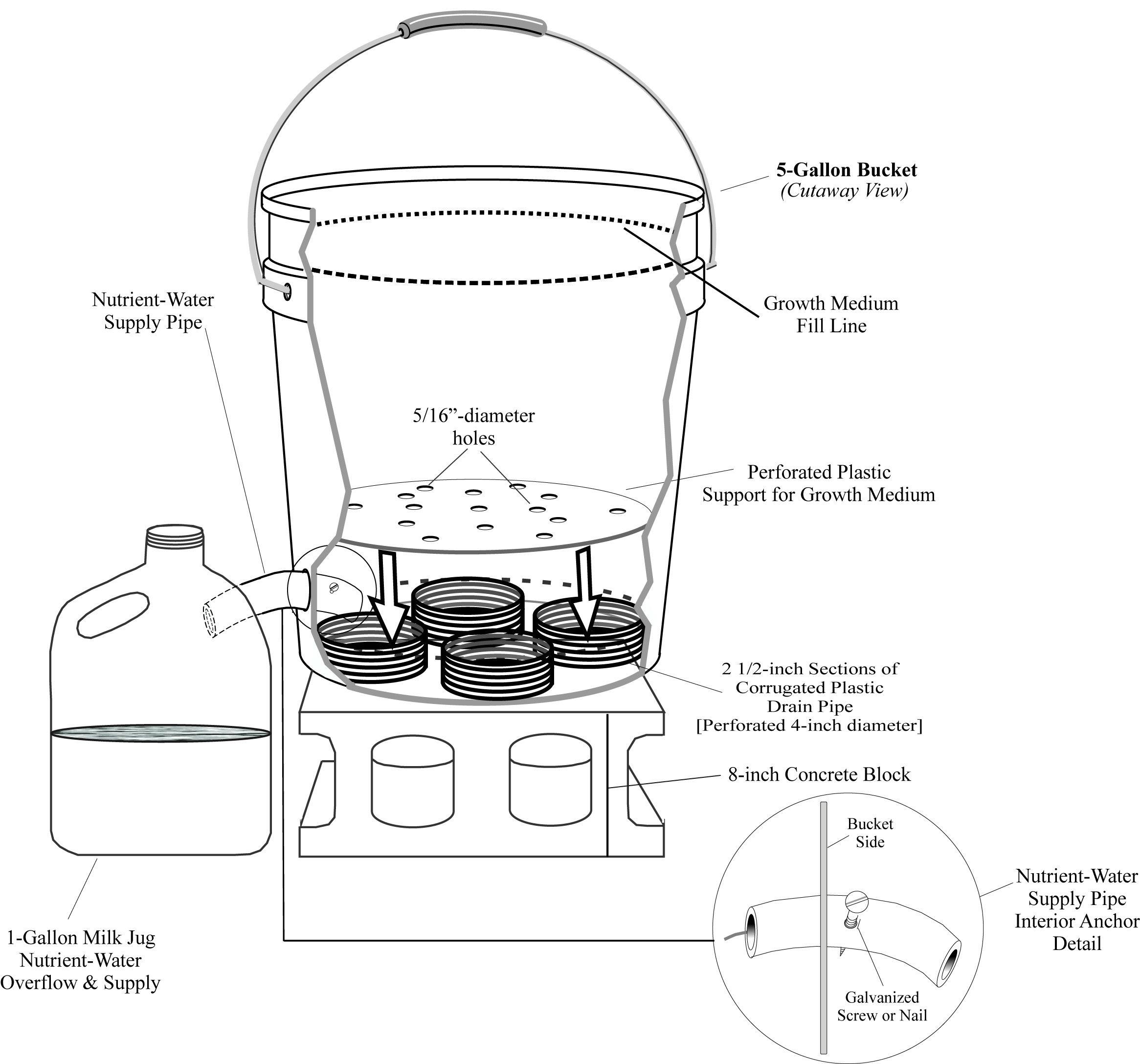 Bucket Illustration Besproeiing Vir Potplante