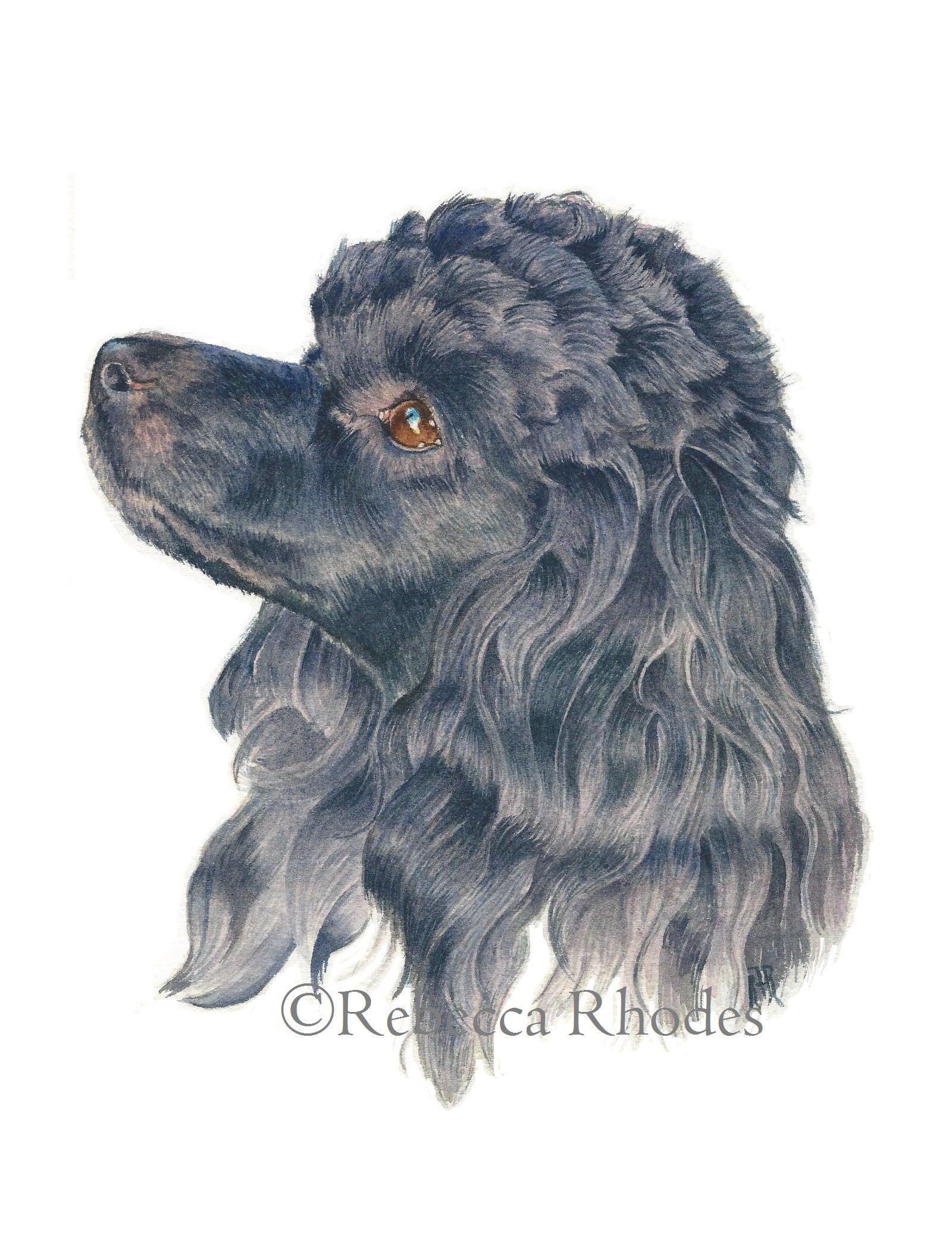 75d22cc9477d Watercolor Painting Tutorial - Poodle Dog - YouTube | Art-Watercolor ...