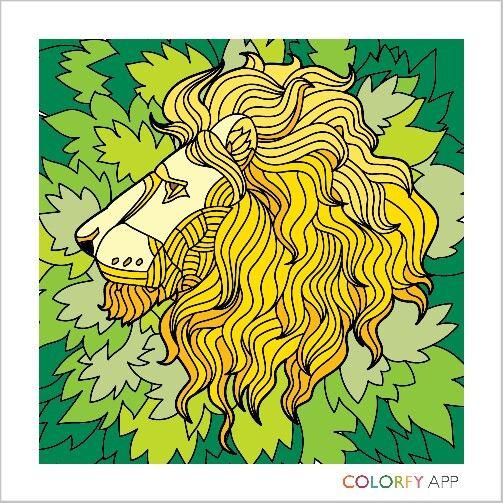 Colorfy Pinturadigital Adults Lion Leao Desenhos Pintar