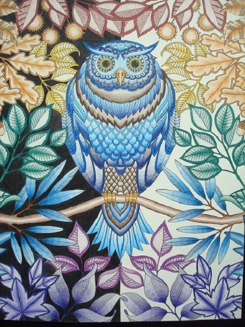 Colouring In The Midst Of Madness An Interview With Lucy Fyles Johanna Basford Coloring Book Secret Garden Coloring Book Secret Garden Colouring