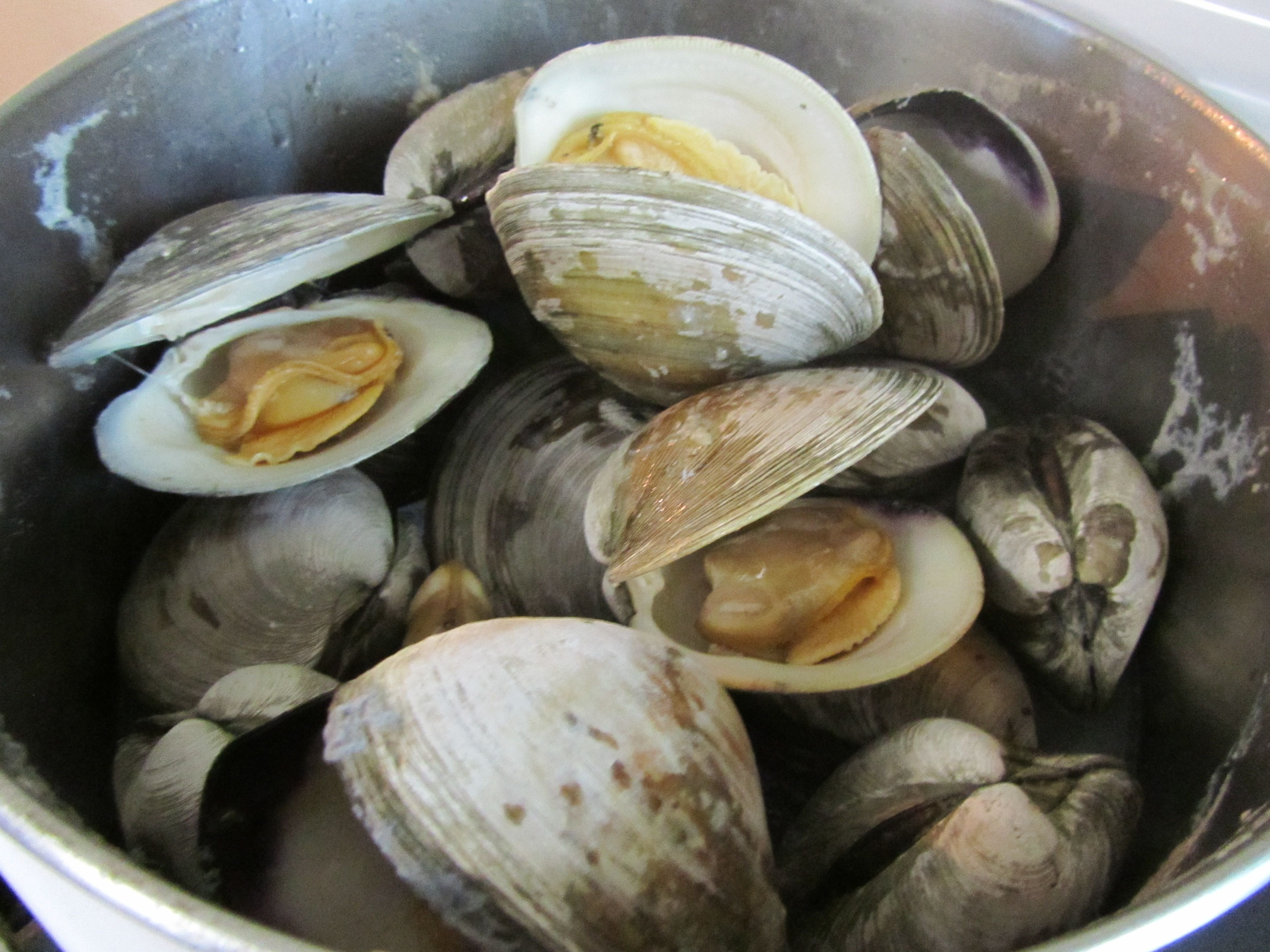 Steamed Cherry Stone Clams When I Was Younger My Mom Used To Make These And They Were So Good Food Fresh Ingredient Cooking