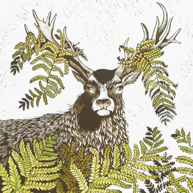 Stag do by printmaker katharine green blank art cards by green stag do by printmaker katharine green blank art cards by green pebble m4hsunfo