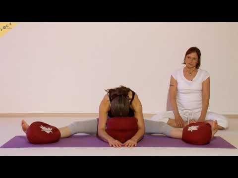 yin yoga  libelle  einzelne Übung  mit shanti und
