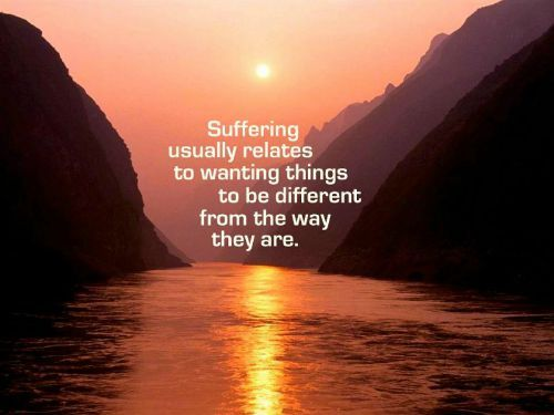 Pema Chodron Quotes Amazing 15 Lifechanging Quotes From Pema Chodron  Pema Chodron And Recovery