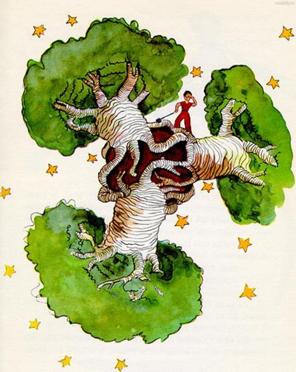 """""""Le Petit Prince et les Baobabs"""" Illustration de Antoine"""
