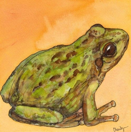 Pin On Frog Toad