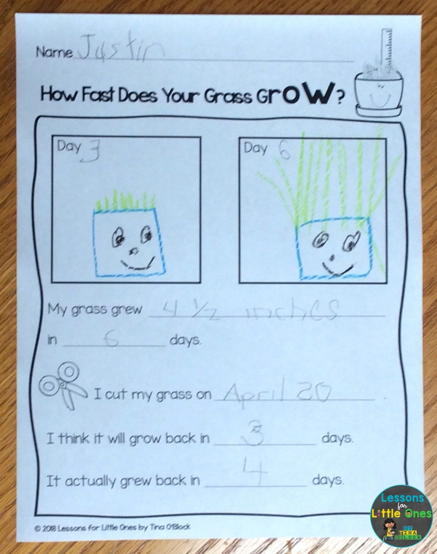 Plants Science Experiments Amp Teaching How Plants Grow In