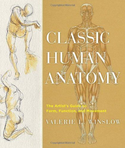 1 anatomy book classic human anatomy the artists guide to form classic human anatomy the artists guide to form function and movement by valerie l winslowhttpamazondp0823024156ref fandeluxe Choice Image