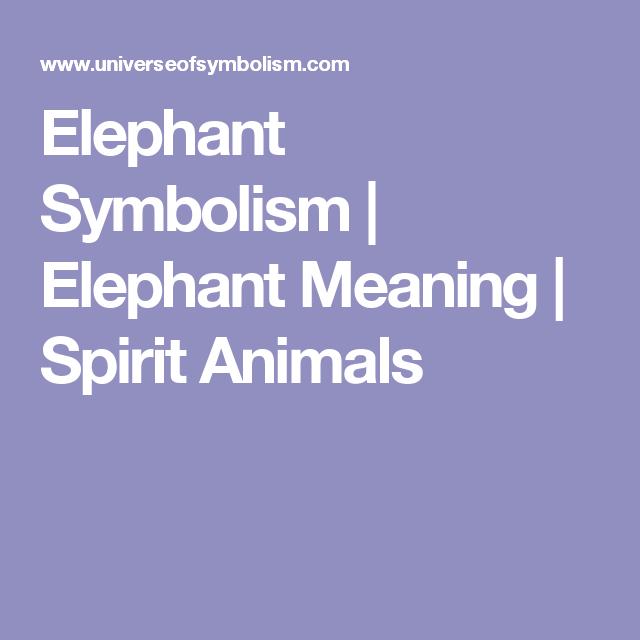 Elephant Symbolism Elephant Meaning Spirit Animals Life