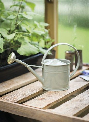 1-5L Watering Can in Gooseberry