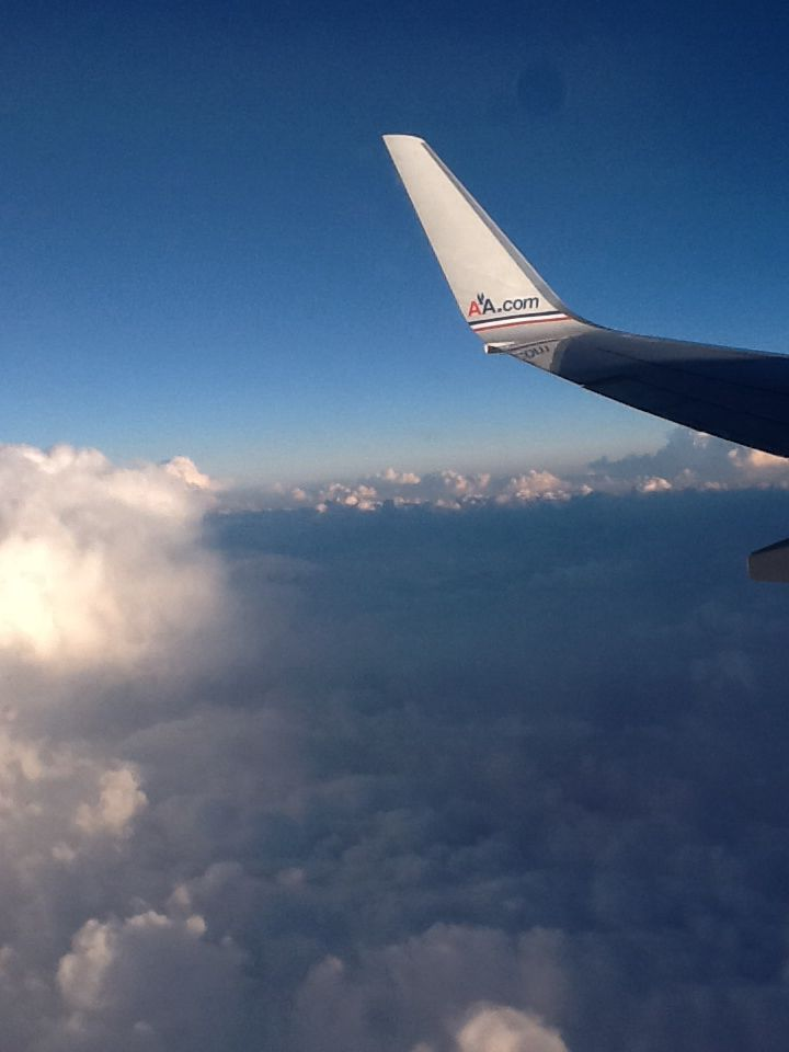 Boeing 737 American Airlines Flight Attendant Boeing 737 Airplane View