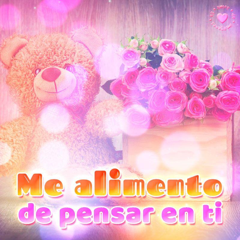 Linda Imagen De Osito Con Rosas Y Frase De Amor Mensajes Pinterest
