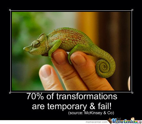 Are you a butterfly or chameleon? The recipe to lasting transformation!