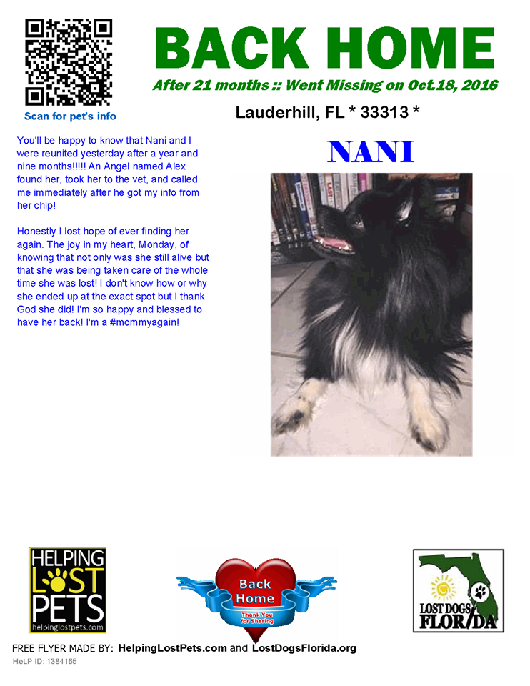 A Great Story From Our Friends With Lost Dogs Florida Nani Is