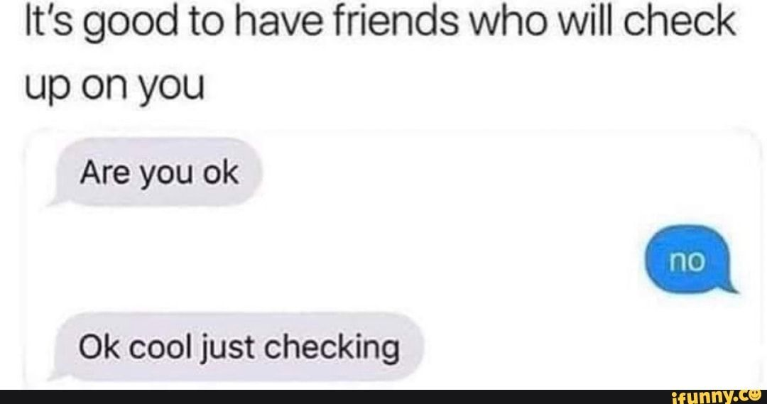 It S Good To Have Friends Who Will Check Up On You Are You Ok Ok Cool Just Checking Ifunny Memes Are You Ok Wholesome Memes