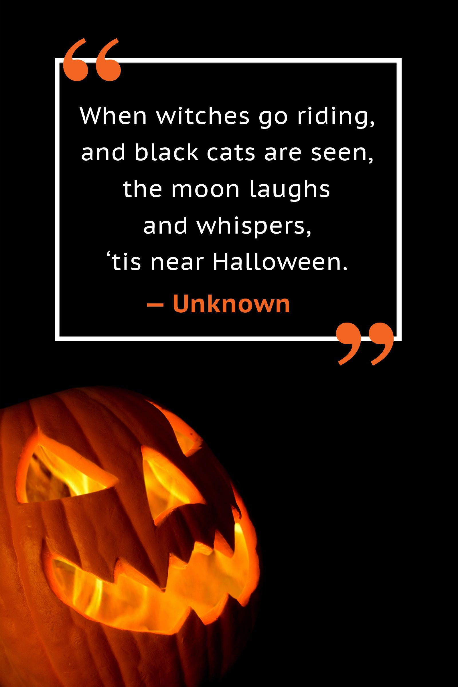 20 halloween quotes that are the definition of spooky | halloween