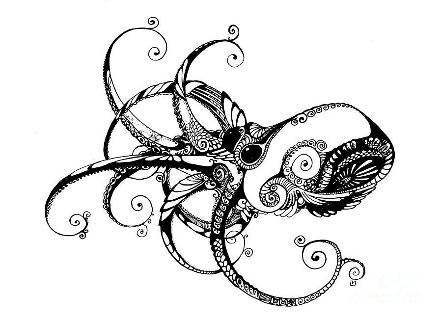 Line Art Octopus : Octopus line art drawing zentangle pinterest