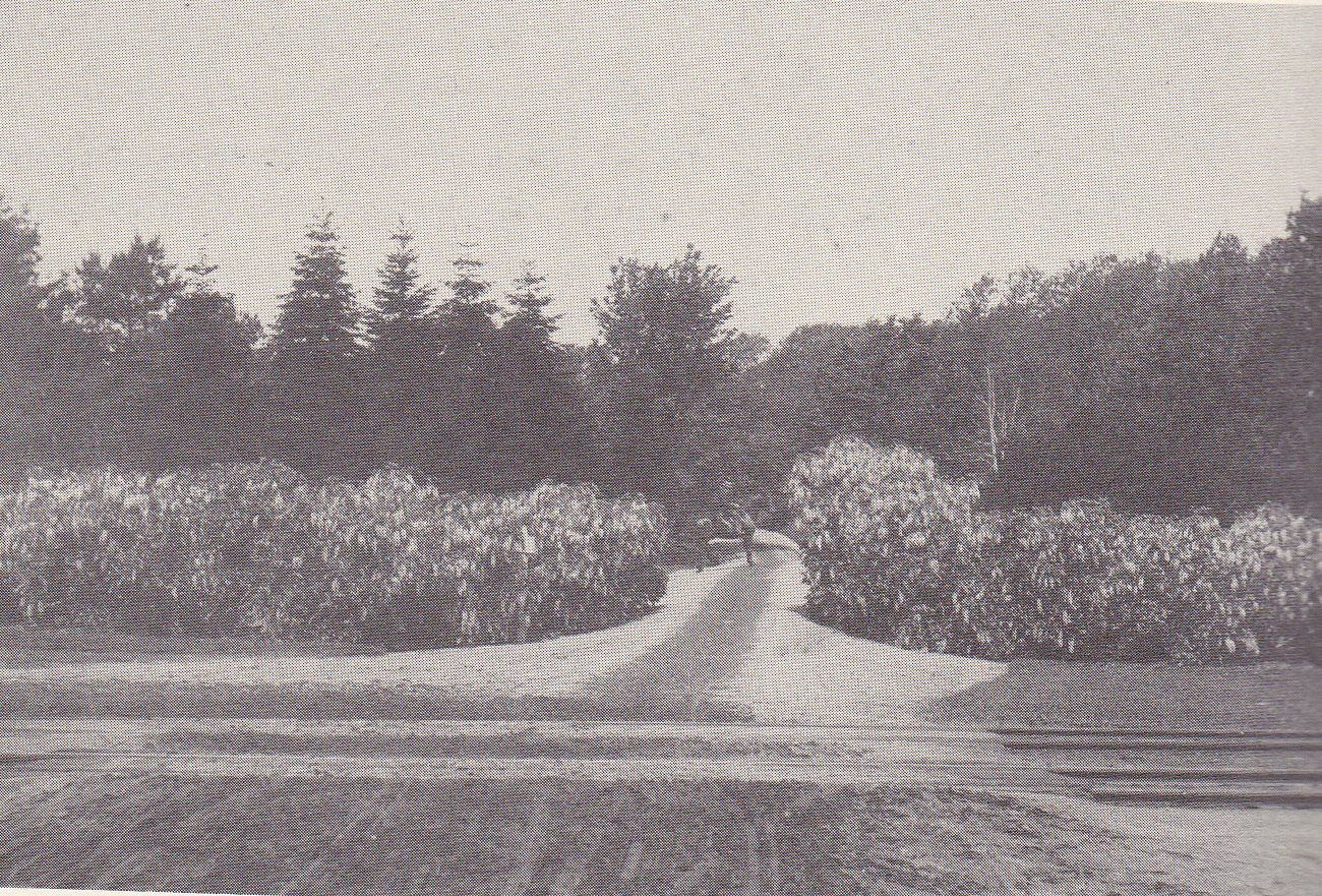 The entrance off Depot avenue around 1900. Outdoor