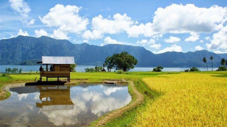 14 Sketsa Gambar Pemandangan Alam Indonesia Gambar Pemandangan Alam Pedesaan Yang Asri Pakethp Com Download 12 Pantai Cantik Di Di 2020 Pemandangan Pantai Lanskap
