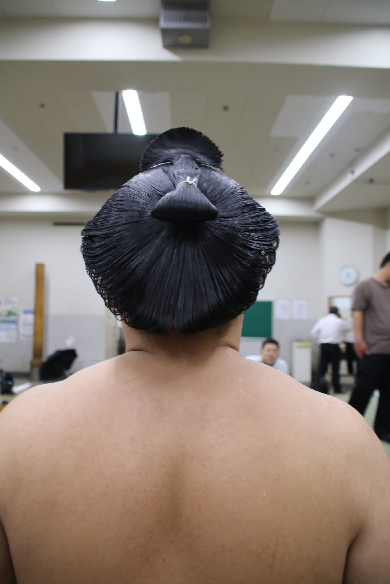 Sumo Mono Sumo Japanese Culture World Cultures