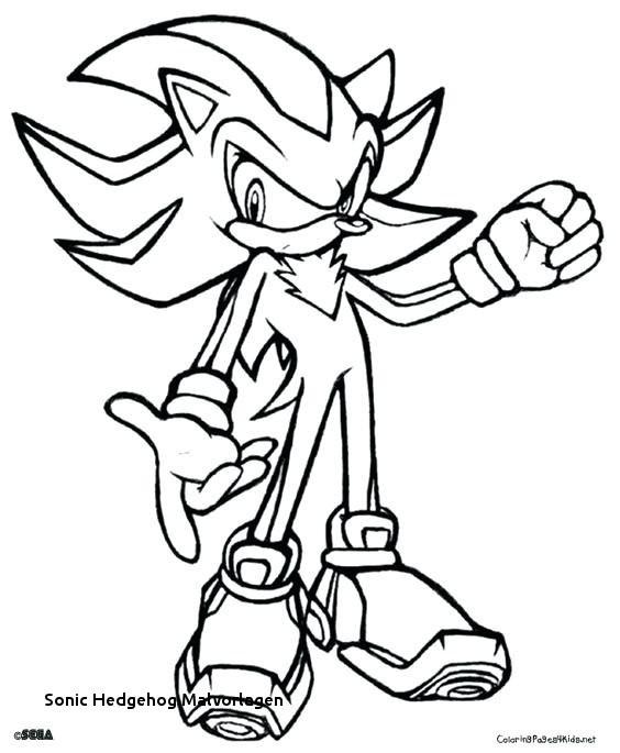 Espio Sonic Coloring Pages Photos