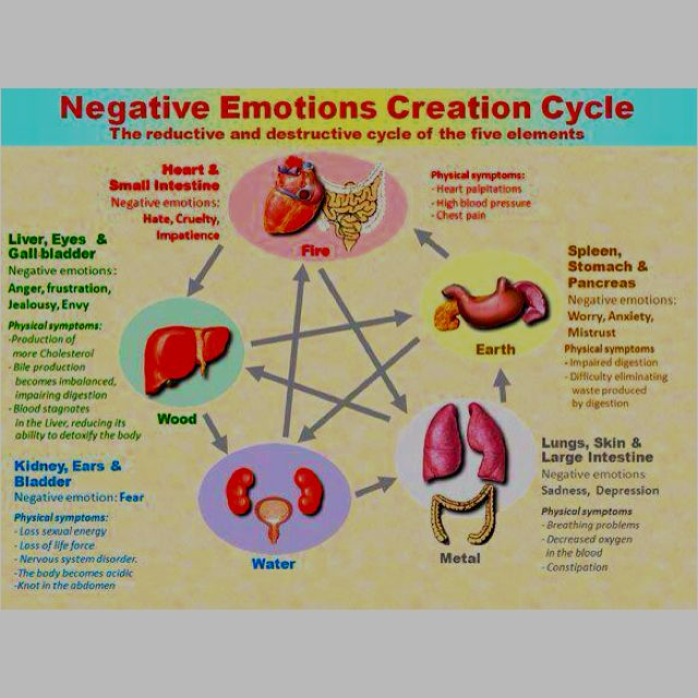 14++ Where emotions are stored as pain in the body trends
