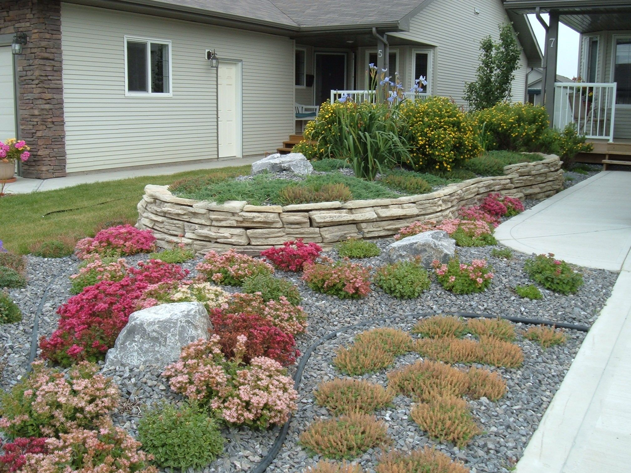 Minimal maintenance landscaping a no lawn front yard with for Ideas for front yard plants