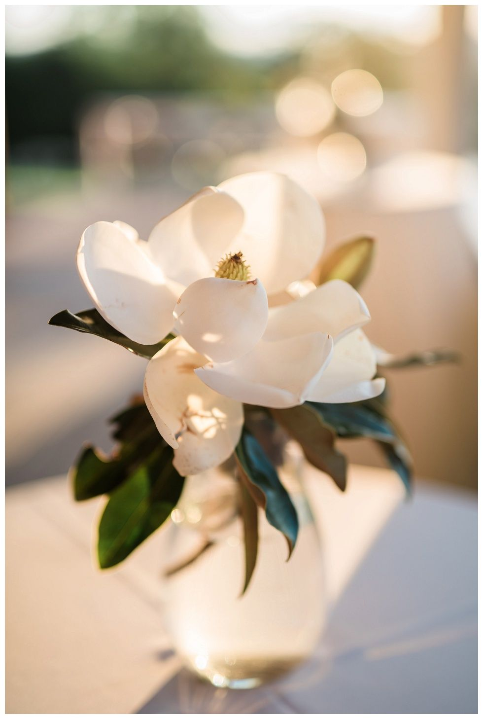 Simple Magnolia Flower Centerpiece Northwest Arkansas Wedding Photographer Arkansas Weddin Magnolia Wedding Flowers Magnolia Wedding Arkansas Wedding Venues