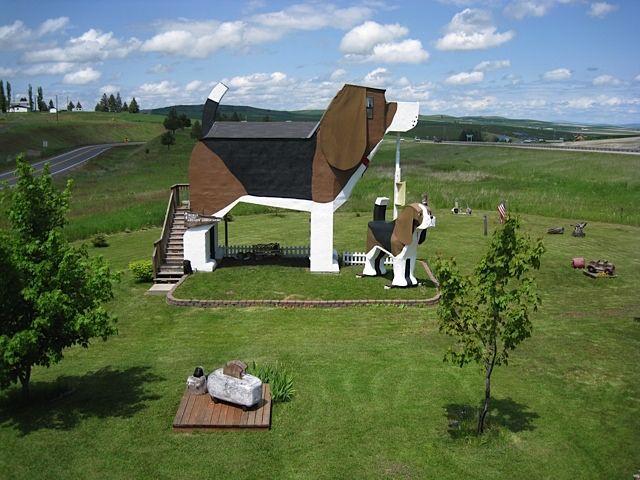 ビーグル三昧で滞在できるホテル Dog Bark Park Inn 画像あり
