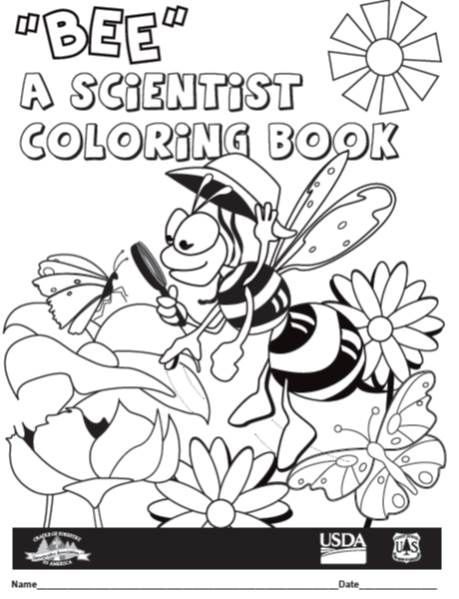 Http Www Naturalinquirer Org Bee A Scientist Coloring Book I 60 Html Coloring Books Free Coloring Types Of Science