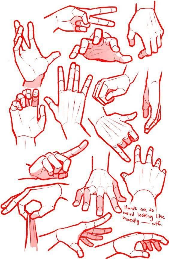 Como Dibujar Manos Hand Drawing Reference Human Body Art Hand Reference