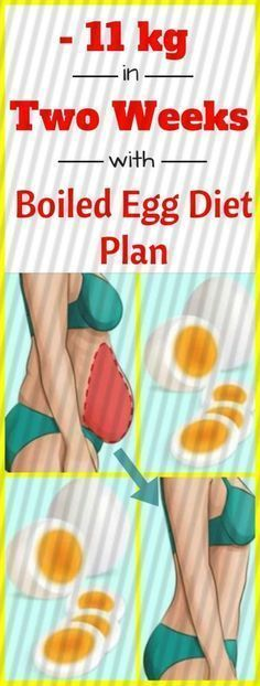 Lose 11 kg In Two Weeks With This Boiled Egg Diet Plan #boiledeggnutrition Lose 11 kg In Two Weeks With This Boiled Egg Diet Plan #boiledeggnutrition Lose 11 kg In Two Weeks With This Boiled Egg Diet Plan #boiledeggnutrition Lose 11 kg In Two Weeks With This Boiled Egg Diet Plan #boiledeggnutrition Lose 11 kg In Two Weeks With This Boiled Egg Diet Plan #boiledeggnutrition Lose 11 kg In Two Weeks With This Boiled Egg Diet Plan #boiledeggnutrition Lose 11 kg In Two Weeks With This Boiled Egg Diet #boiledeggnutrition